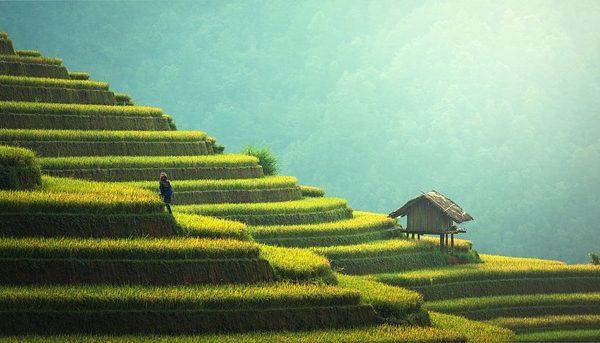Rejser til Burma